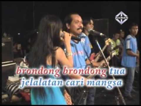 BERONDONG TUA Reza Lawang Sewu Pantura Live Music