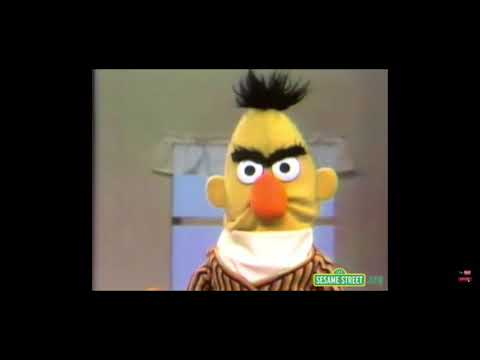 Download Sesame Street Bert Gets Angry Video 3gp Mp4 Flv Hd Mp3