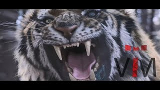 The Tiger  An Old Hunter S Tale    Music Video