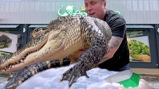 GIVING MY HUGE PET ALLIGATOR A BATH!! | BRIAN BARCZYK by Brian Barczyk