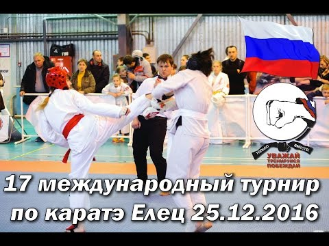 17 международный турнир по каратэ Елец