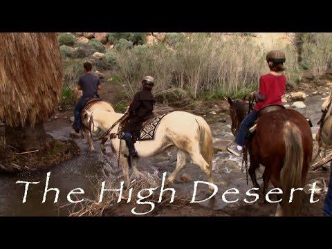 Best Horseback Ride Palm Springs Video (HD)