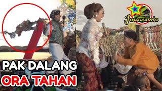 Video PERCIL Cs Lusi Brahman - 16 SEPTEMBER 2018 - Ki Exwan - Bedi wetan Bungkal Ponorogo MP3, 3GP, MP4, WEBM, AVI, FLV September 2018