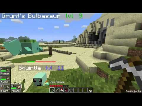 PokeMobs Ep. 5 - Squirtle Training