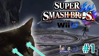 Super Smash Bros. Wii U Part 1- Sir Lady! Adventures in Smash with Donald Trump, and tasty Ike Soup