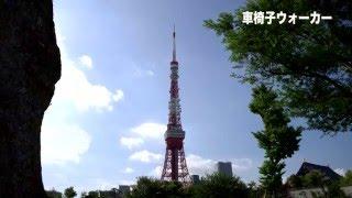 車椅子で行く 東京タワー (Tokyo Tower)