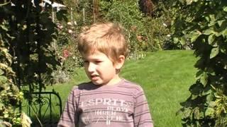 #235 Lukas und der Zuckermais 2