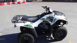 2. 2018 Kawasaki Brute Force 300