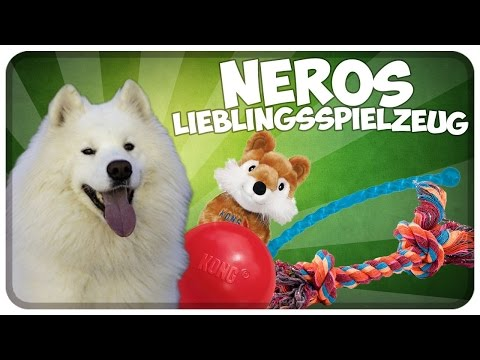 Nero´s Lieblingsspielzeug! Empfehlenswertes Hundespielzeug mit guter Qualität! Tipps!!