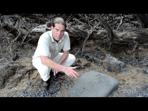 Alien - UFO Sightings Proof Ancient Aliens Abduction 3000 Year Old Carvings! Watch Now 2013 The Illuminated One Shot by UFO Hunter Mark Bennis from UFO-WATCH-UK Visi...