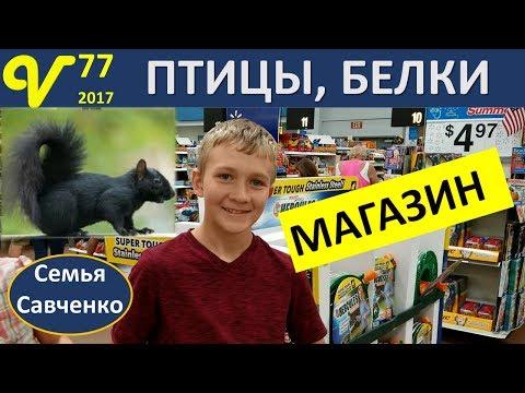 Магазин, Покупки для птиц Вовы Влог 77 будни многодетной семьи Савченко