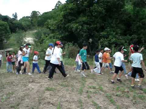 Plantio de Árvores no Rio Formiga em Ortigueira, Paraná. Ação conjunta da Copel, Eletrosul e Governo do Município de Ortigueira para o programa de implantação da Usina Mauá.