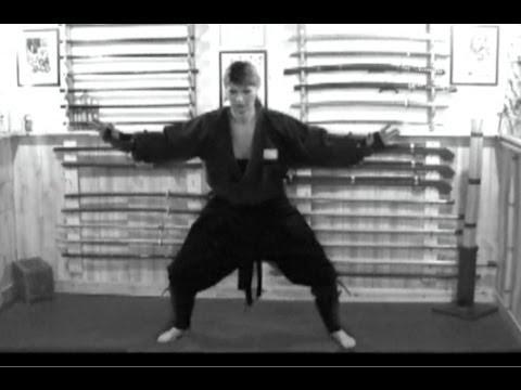 Heiho #0014 – Ninja Evasion Techniques (Tonjutsu) – Shurikenjutsu, Tojutsu, Ninpo, Budo, Taijutsu