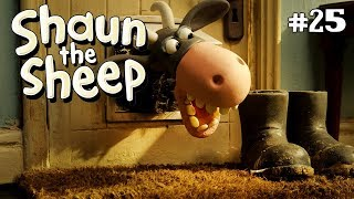 Tatapan Hipnotis   Shaun The Sheep  The Stare