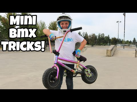 Can I Tailwhip It?! Mini BMX Skatepark Tricks!!