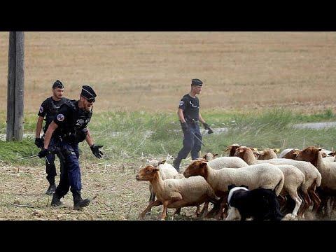 Κτηνοτρόφοι κατά… Tour de France