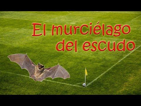 Horroritat valenciana - Capítulo 5 - El murciélago del escudo