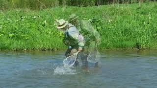 Fliegenfischen in Polen Bachforellen und Äschen am San Fluss