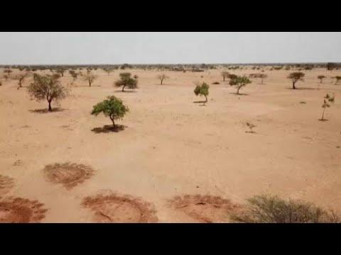 Σοκ από την έκθεση του ΟΗΕ για την παγκόσμια πείνα