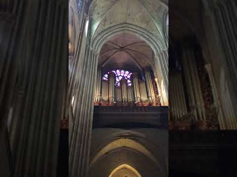 The Great Organ of Notre Dame Cathedral