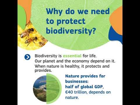 Biodiversity   EUGreenDeal