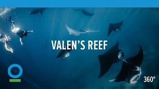 Vous désirez vous immerger dans les eaux Indonésienne ? Valen's Reef, un film VR sur l'engag