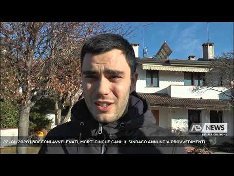 22/01/2020 | BOCCONI AVVELENATI, MORTI CINQUE CANI: IL SINDACO ANNUNCIA PROVVEDIMENTI