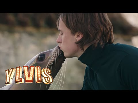 Ylvis Language Of Love Music Video