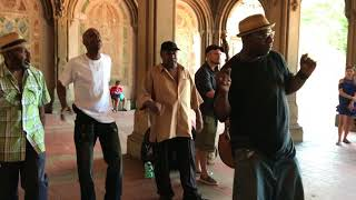 "Video must-see! ""Stand by Me"" Cover Story  (Acapella Soul) Wonderful!New York  Central Park MP3, 3GP, MP4, WEBM, AVI, FLV Juni 2018"