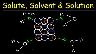 This chemistry video provides a basic introduction into solubility and how compounds dissolve in water.  It discusses how water separates sodium cations from chloride anions in a sodium chloride crystal when placed in liquid water.  Water is a polar molecule.  The oxygen part of H2O carries a partial negative charge which pulls on the positively charged sodium ions and the hydrogen part of water carries a partial positive charge which pulls on the negatively charged chloride ions.  This video discusses the difference between a solute, solvent and a solution.  Tbe solvent dissolves the solute.  In this example, NaCl is the solute and water is the solvent.  The solution is the combination of the solute and the solvent.  This tutorial also discusses the difference between strong electrolytes, weak electrolytes and nonelectrolytes.  NaCl is a strong electrolyte since it's ionizes completely in water and conducts electricity.  HC2H3O2 is weak electrolyte since it ionizes partially in water.  Sucrose - C12H22O11 is a nonelectrolyte since it does not separate into ions even though it's soluble in water.  This tutorial contains plenty of concepts and examples.New Chemistry Video Playlist:https://www.youtube.com/watch?v=bka20Q9TN6M&t=25s&list=PL0o_zxa4K1BWziAvOKdqsMFSB_MyyLAqS&index=1Access to Premium Videos:https://www.patreon.com/MathScienceTutor
