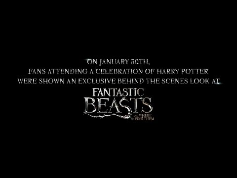 Fantastic Beasts and Where to Find Them (Featurette 2)
