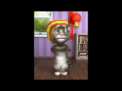 packy el gato hondureno ( LOS QUE SUFRIMOS LOS POBRES )