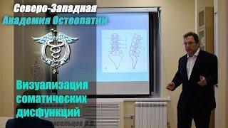 Визуализация соматических дисфункций — Новосельцев С.В. — видео