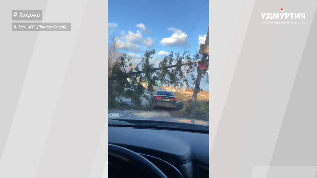 Сильный ветер роняет деревья и хочет сорвать дорожные знаки в Ижевске