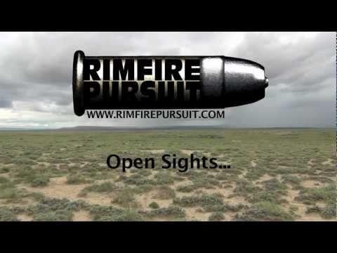 Wyoming Prairie Dog Hunt .22 Long Rifle