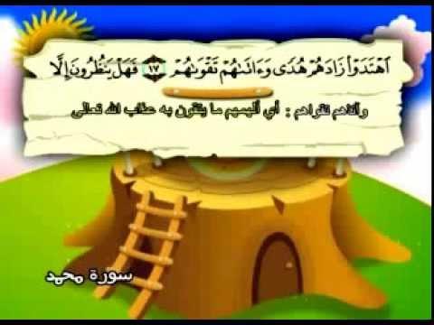 سورة محمد - المصحف المعلم