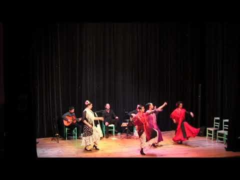 Cour de danse Flameco à Saverdun