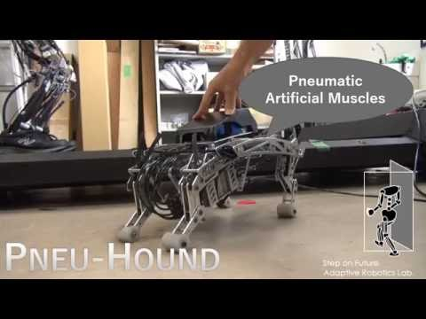 PneuHound A PneumaticPowered Robot Dog from