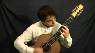 Video Pat Metheny - Letter From Home - guitar, Nikolas Beres