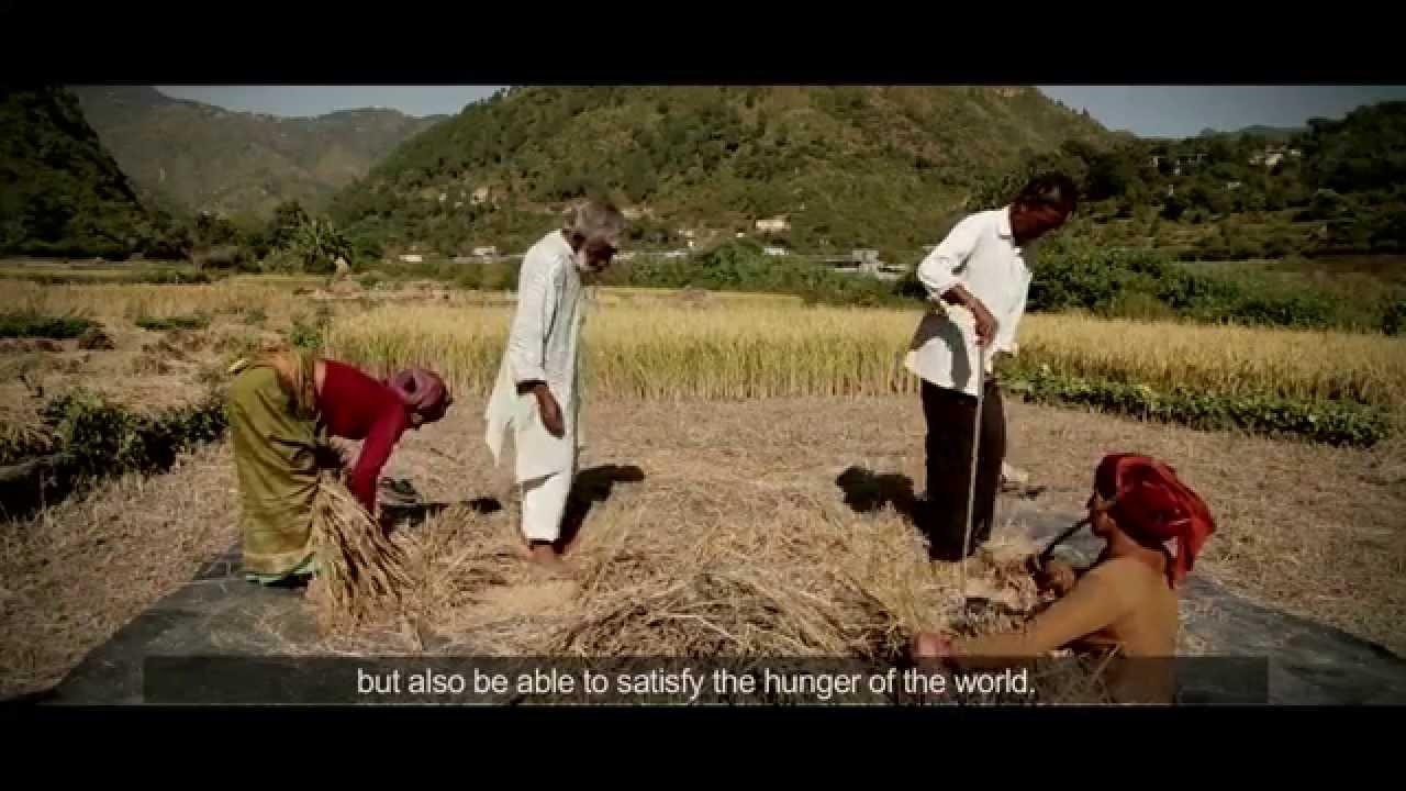 Baranaja: Twelve Seeds of Sustainability