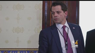 WBZ-TV political analyst says Anthony Scaramucci hasn't brought to the table what the White House expected.