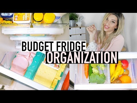 FRIDGE ORGANIZATION IDEAS ON A BUDGET | RE ORGANIZING MY PARENTS REFRIGERATOR