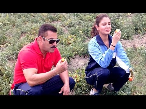 [VIDEO]Salman and Anushka Wandering in Fields of Punjab Eating Raw Tomatoes and Sugarcanes.