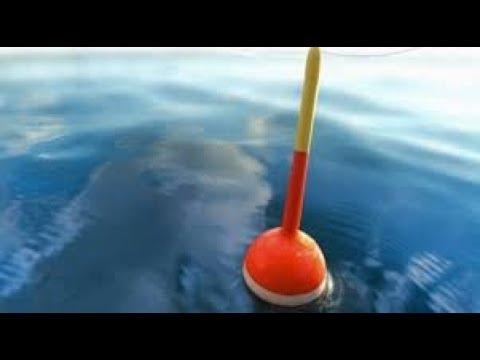 рыбалка ноу-хау на карася