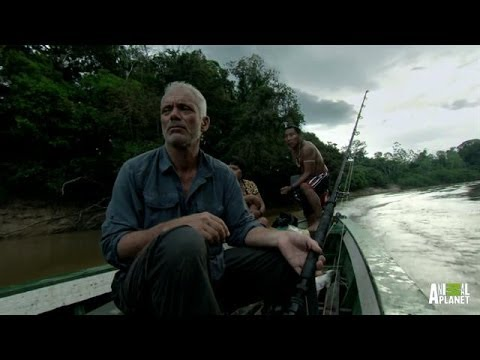 Jungle Terminator: All the Survival Gear You ll Ever Need | River Monsters 20 April 2014 11 PM