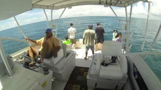 Siesta Key Mink Family Deep Sea Fishing Time Lapse