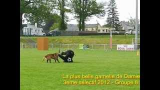 Damien CHARLES et Doker, la plus belle gamelle Sélectifs Ring 2012