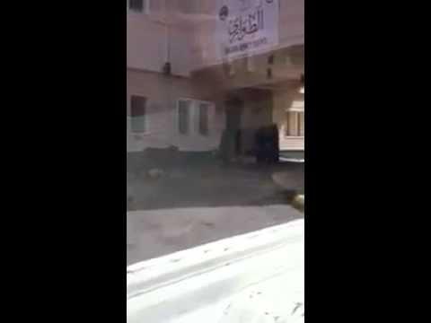 بالفيديو .. حمار يتجول داخل مستشفى سعودي