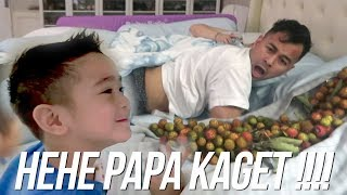 Video PRANK PAPA RAFFI - SEKELILING PAPA ADA RAMBUTAN !!! MP3, 3GP, MP4, WEBM, AVI, FLV April 2019