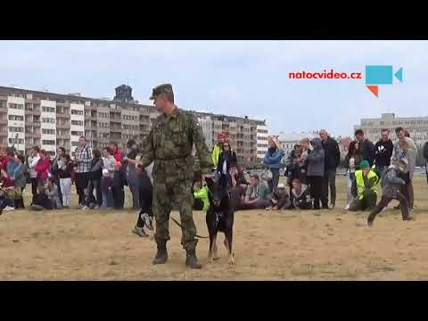 Den s armádou ČR 2